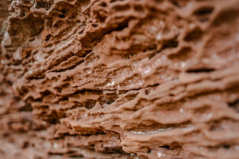 Sandsteinfelsen Pfälzer Wald