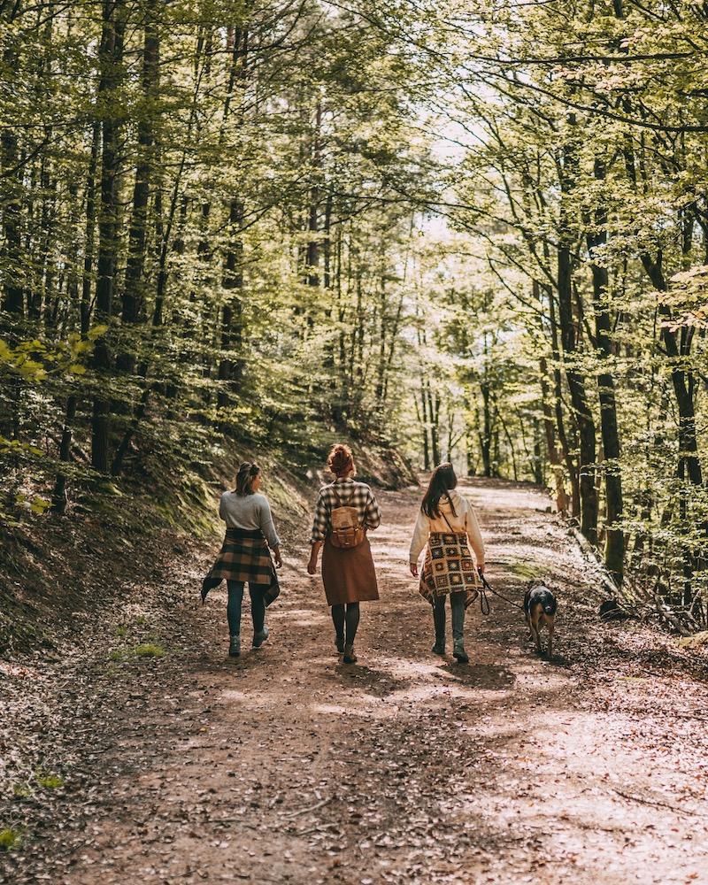 Wandern Waldläufer